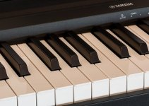 Yamaha Beginner Digital Piano